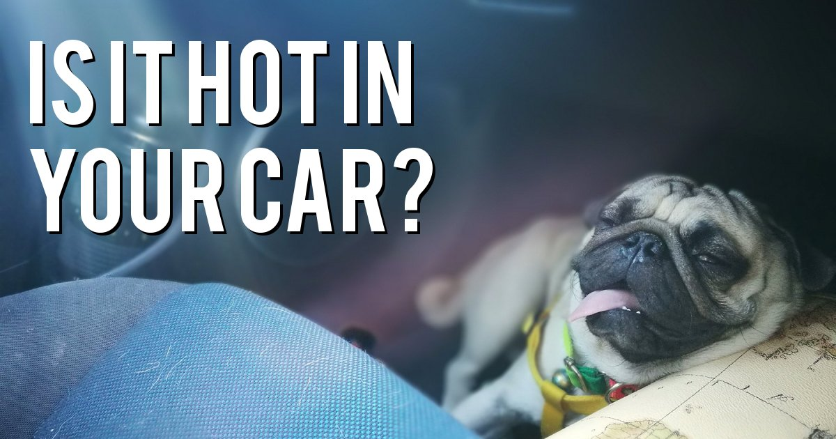 IS IT HOT IN YOUR CAR?